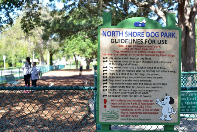 A short walk to Vinoy Park to the dog park in Downtown St Petersburg Florida