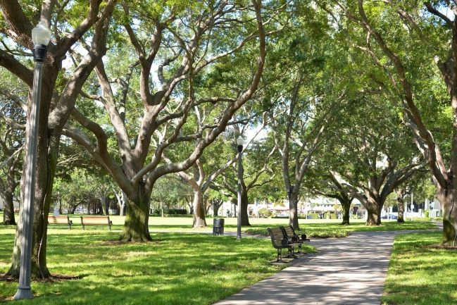 Shaded walkways in North Straub Park right across the street from 400 Beach drive in Downtown St Petersburg Florida