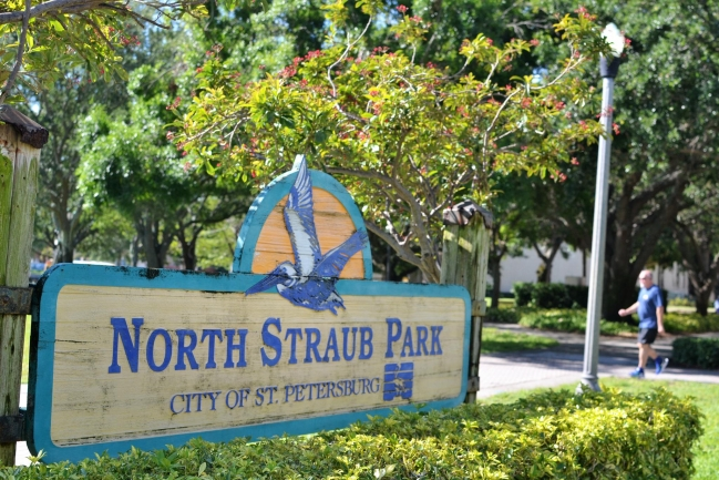 North Straub Park is just two blocks away from 475 Condos in Downtown St Petersburg Florida