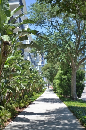 Downtown St Petersburg Florida is full of lush landscaping and beautiful walkways