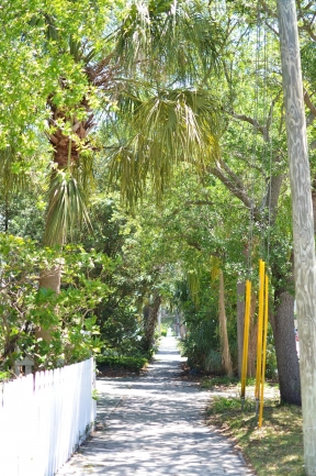 Historic Old Northeast neighborhood. just north of Downtown St Petersburg, has walkways lined with canopies of oak trees