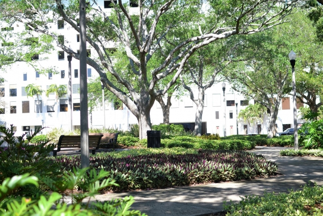 Pioneer Park is named after the founders of St Petersburg and is steps away from Florencia Condos in Downtown St Petersburg Florida
